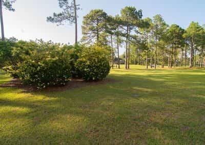 golfcourse-2